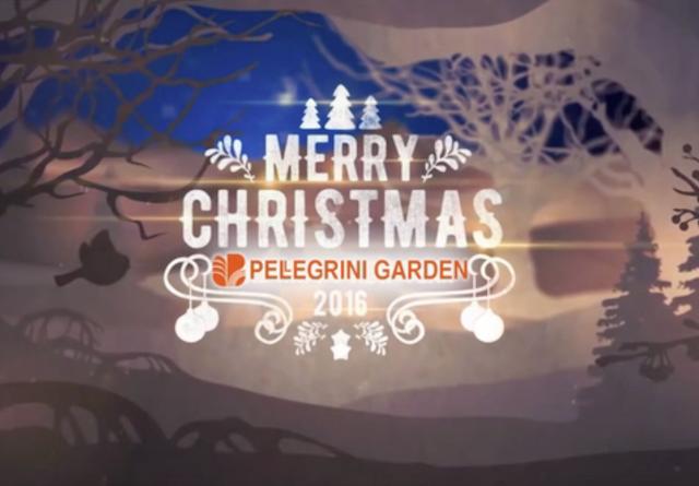 Paesaggi natalizi Pellegrini Garden
