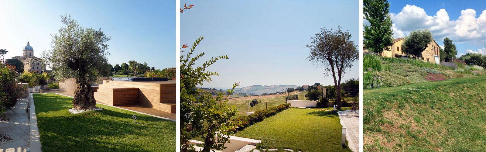 Progettazione giardini come creare un perfetto spazio verde for Corso progettazione giardini