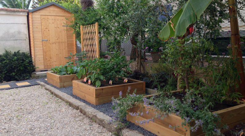 come realizzare un giardino - le piante aromatiche