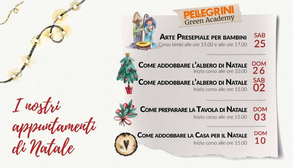 Appuntamenti-di-natale-Pellegrini-Green-Academy