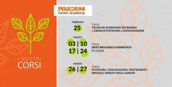 Programma corsi Pellegrini Academy
