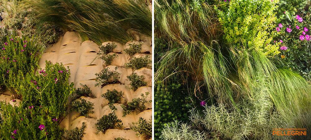 parete_verde_verticale_garden2