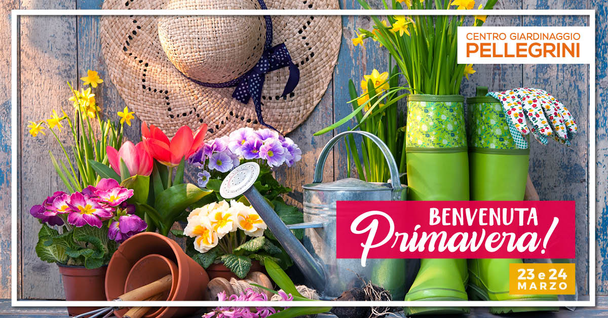 benvenuta_primavera_pellegrini