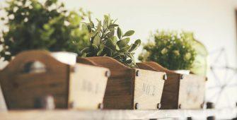 coltivare_erbe _aromatiche_in_cucina