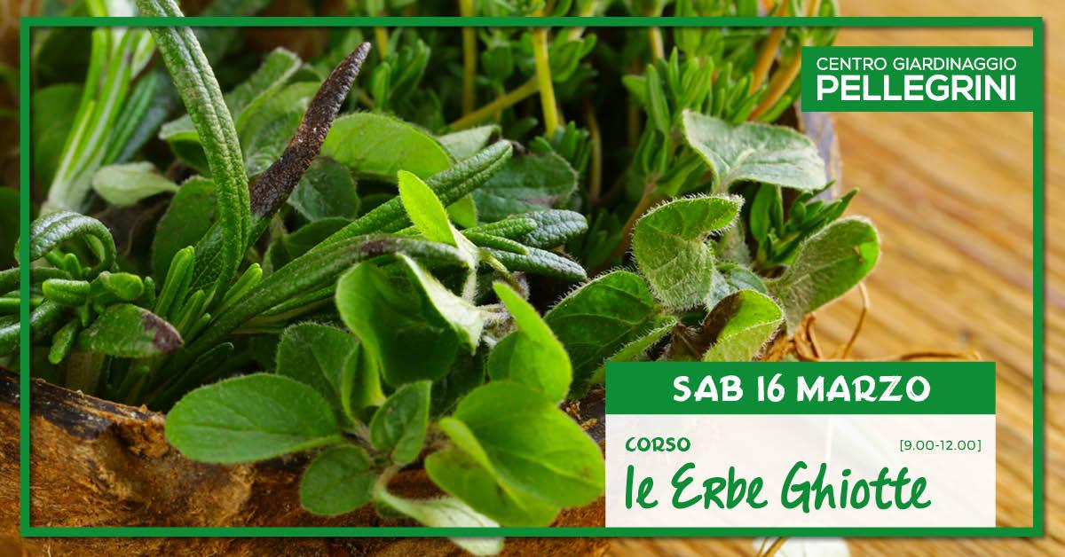 corso_erbe_ghiotte_pellegrini_green_academy
