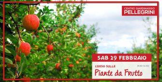 29-02-20-corso-piante-da-frutto-Pellegrini