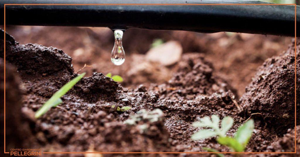 irrigazione-orto-sul-terrazzo
