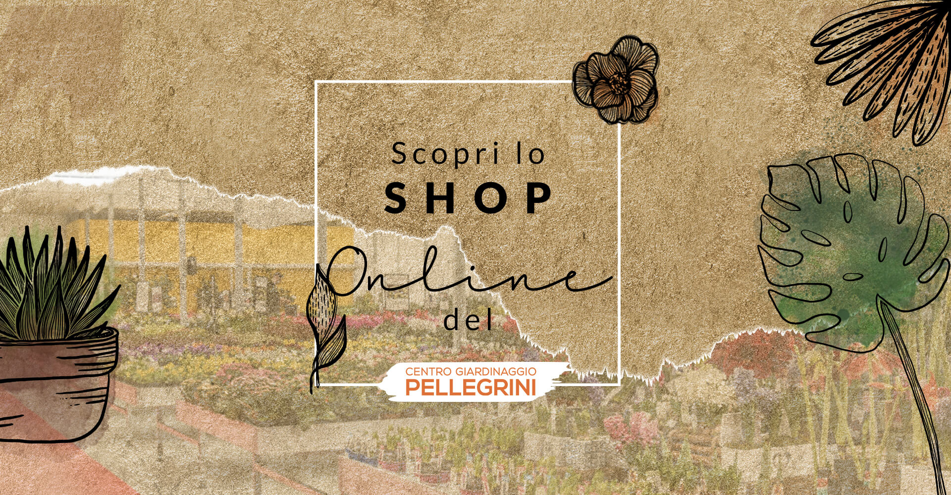scopri lo shop online del centro giardinaggio pellegrini