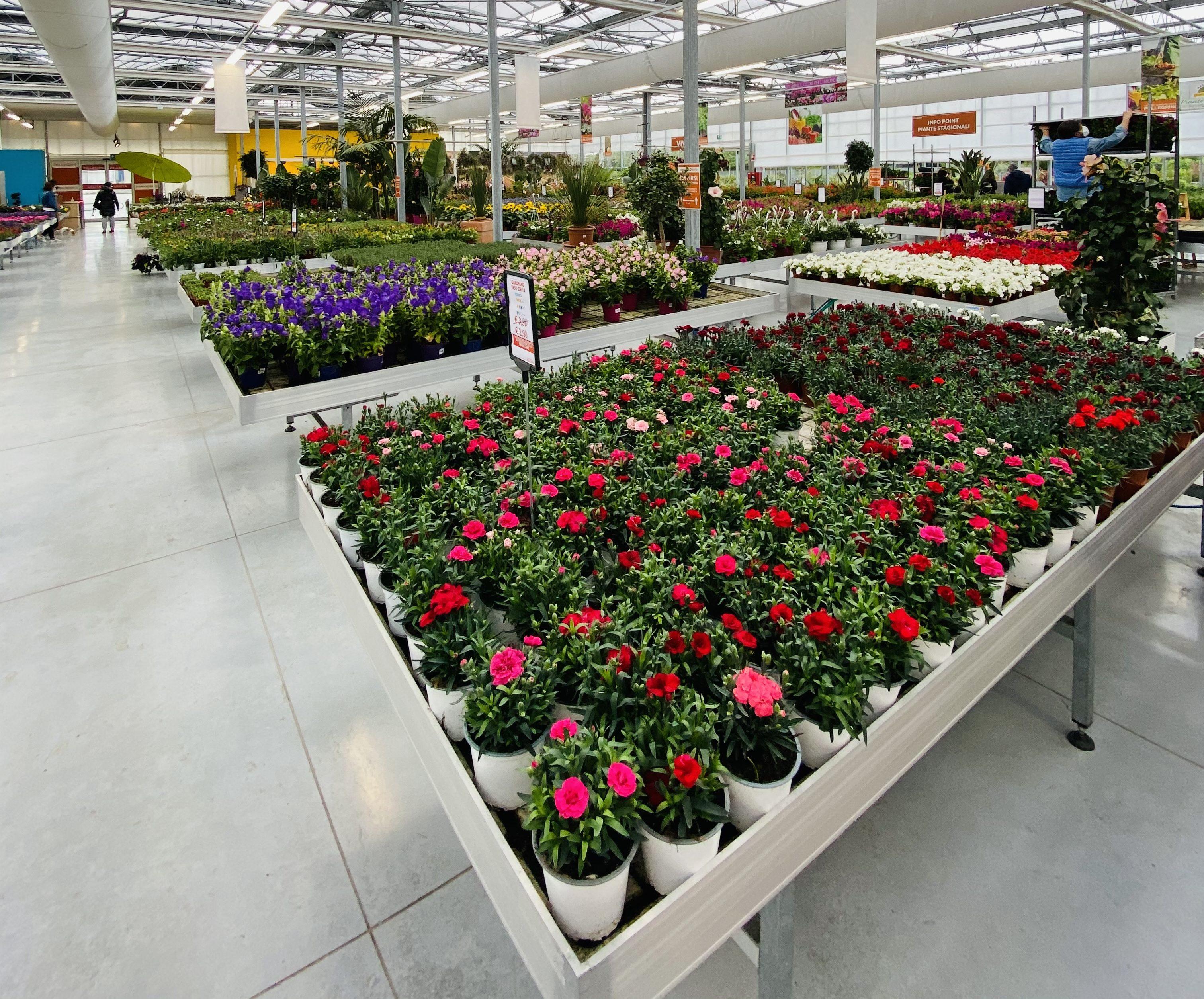 centro-giardinaggio-pellegrini