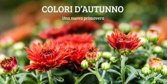 autunno-colori-nuova-primavera