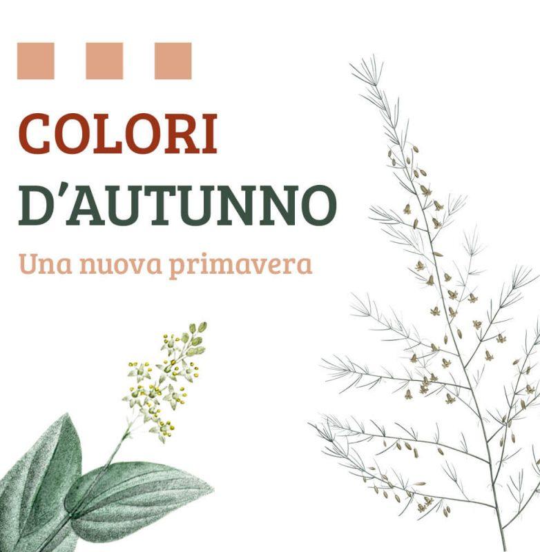 autunno-colori-nuova-primavera5